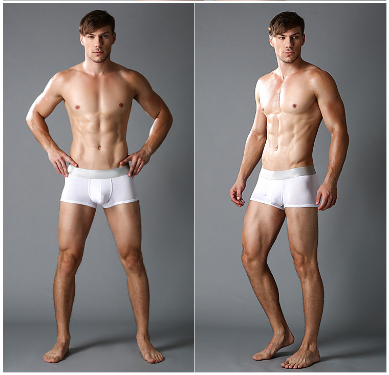 Male Panties Cotton Boxers Panties Breathable Men's Underwear Man Trunk Brand Shorts Man Boxers