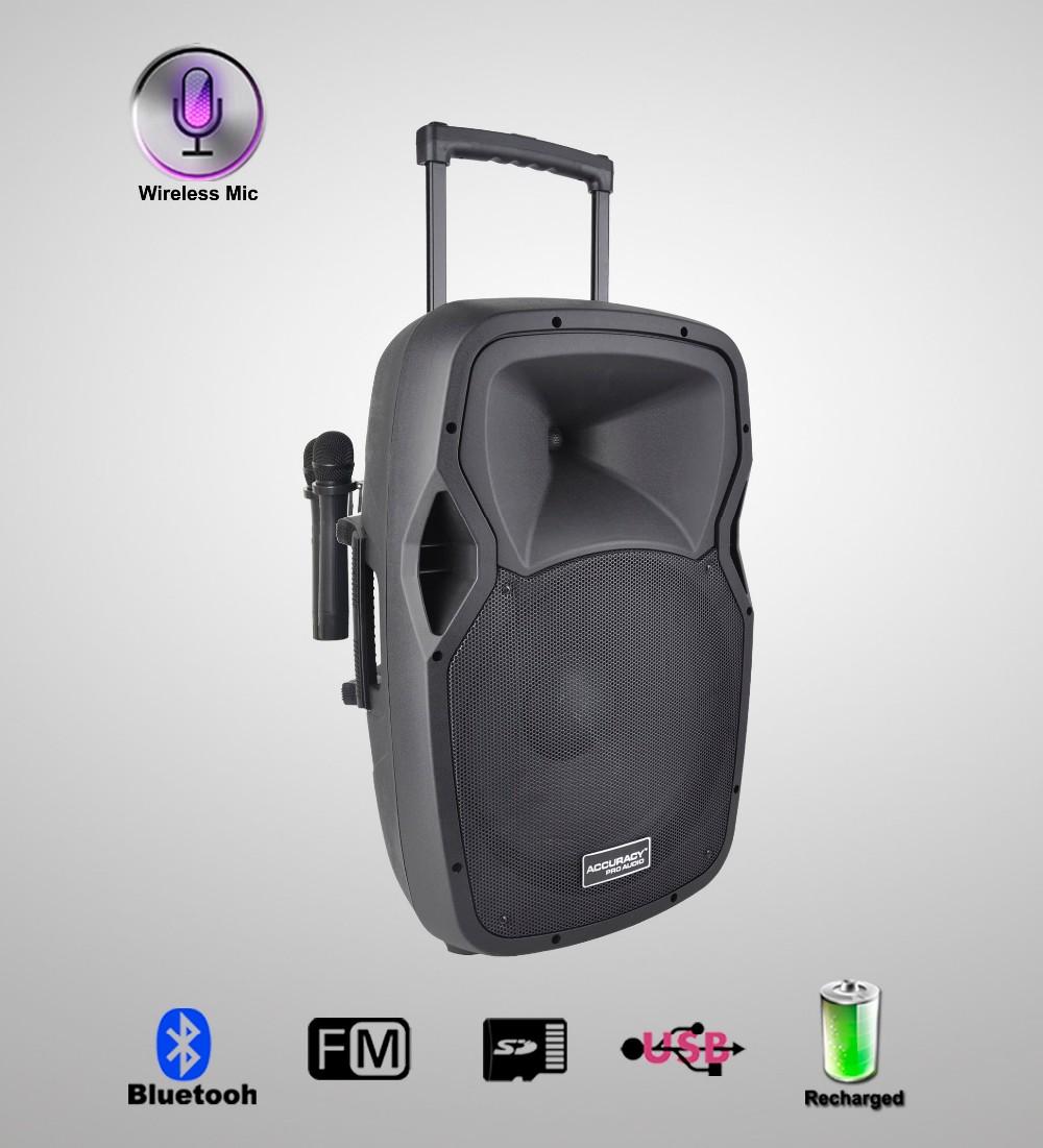 Battery Powered Active Speaker 12v Pmw15amfq-v2bp-bt