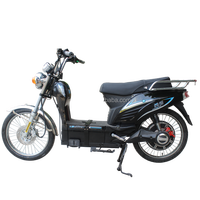 High quality two 3 wheels high loading adult electric motorcycle