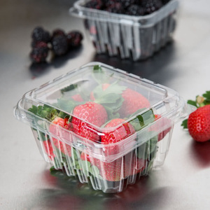 PET clear plastic blister fruit packaging tray