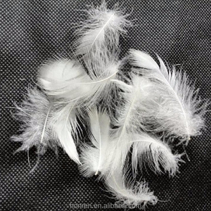 soft cheap white grey duck feathers for sale