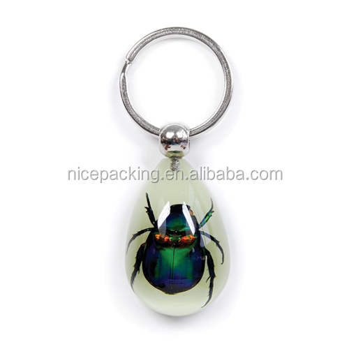 High quality real amber insects key chains, key chains with led light