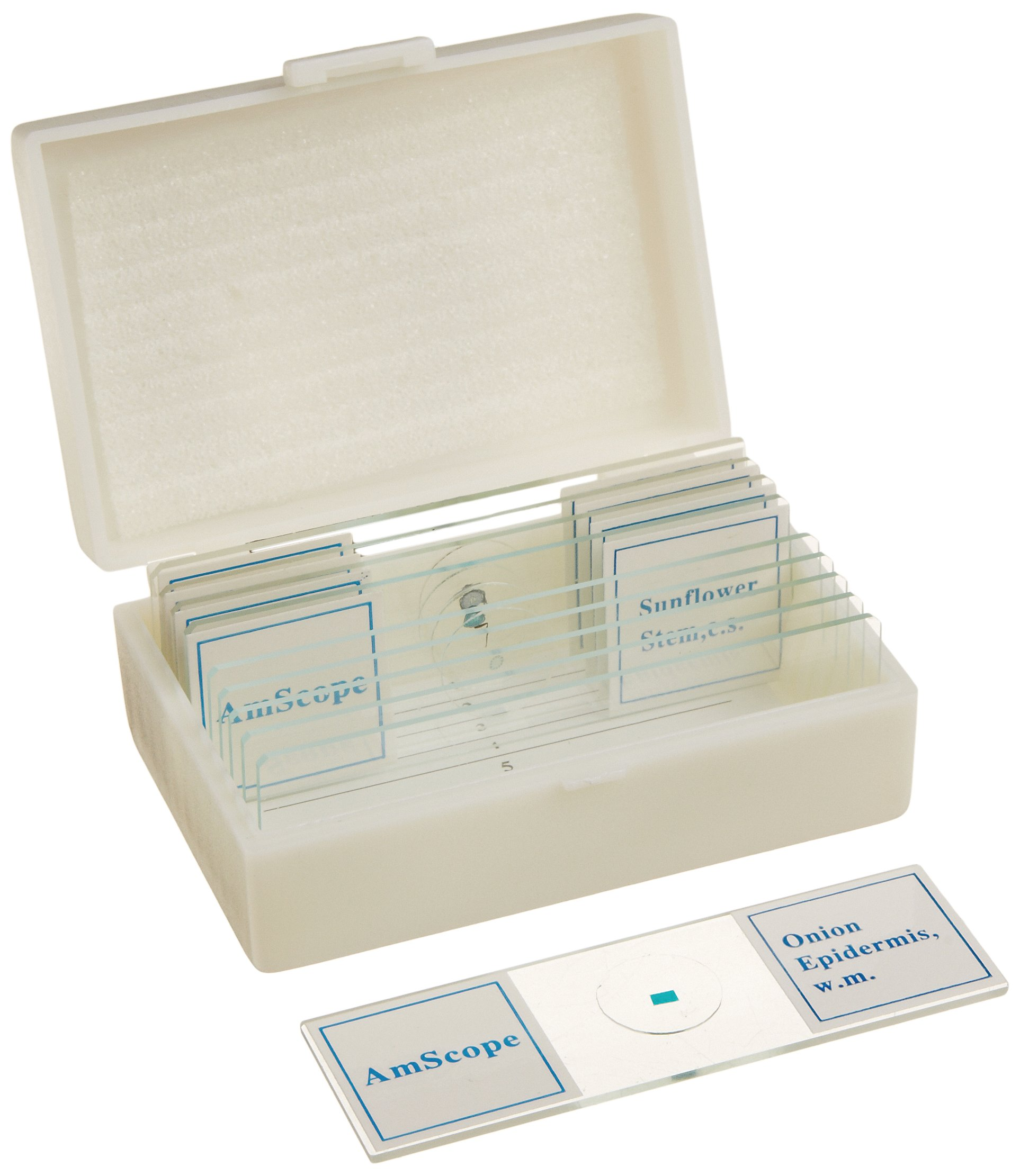 AmScope PS10 Blank and Prepared Microscope Slide Set for Basic Biological Science Education, Includes Five Blank and Five Prepared Slides in a Fitted Plastic Case
