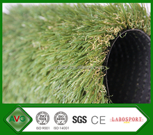 AVG Selling High Quality Large Ornamental Grass For Gardens Design