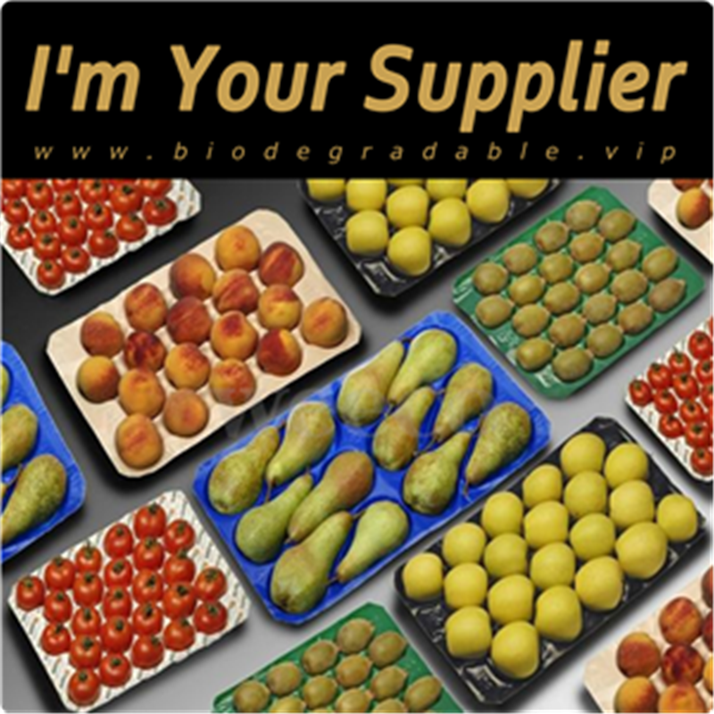 Biodegradable disposable recycled paper pulp fruit tray