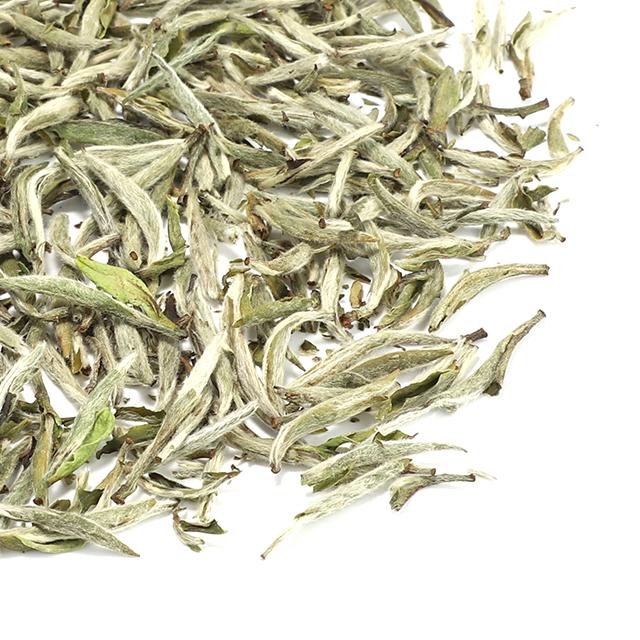 EU organic wholesale fujian silver needle white tea supporting for low MOQ private label - 4uTea | 4uTea.com