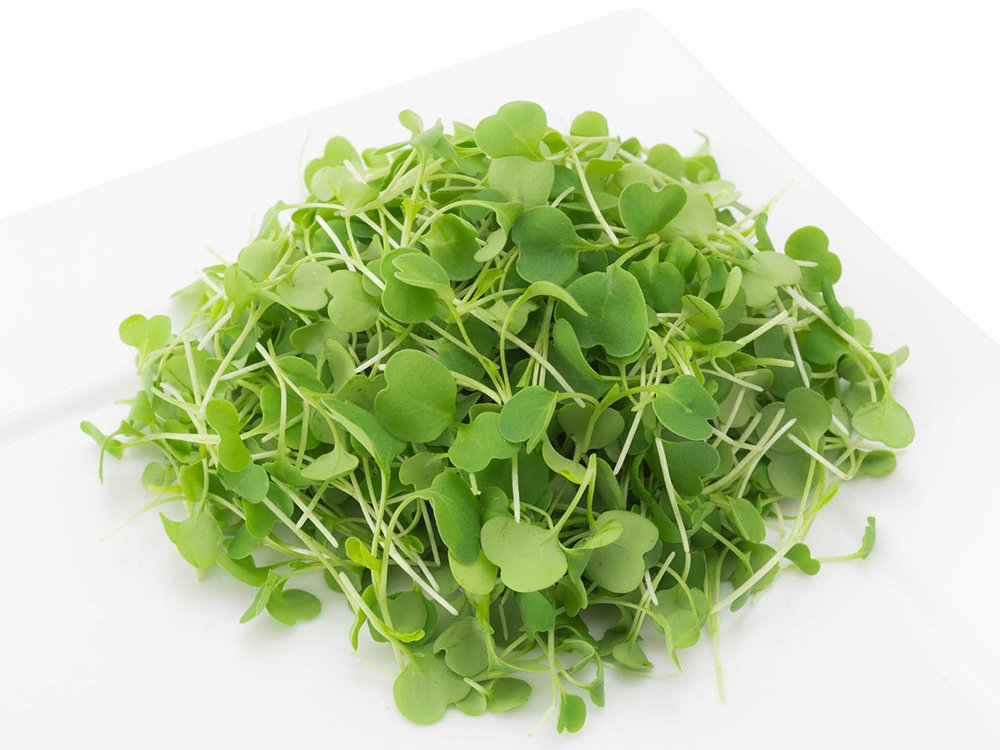 2 Friends Farm Local Northeast Organic Arugula Microgreens 3oz