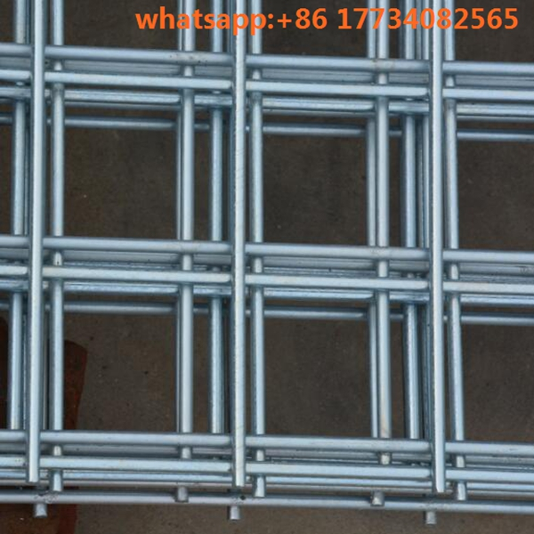 Chinese supplier Good Quanlity Galvanized welded wire <strong>mesh</strong> for cage