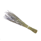 Garden decoration material dried lavender natural colour flower