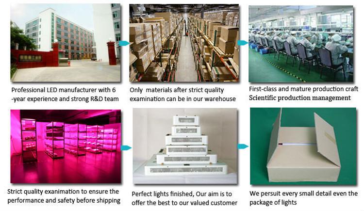 魚のサンゴ礁led水族館ライト用の工場ベストセラー高品質ランプ
