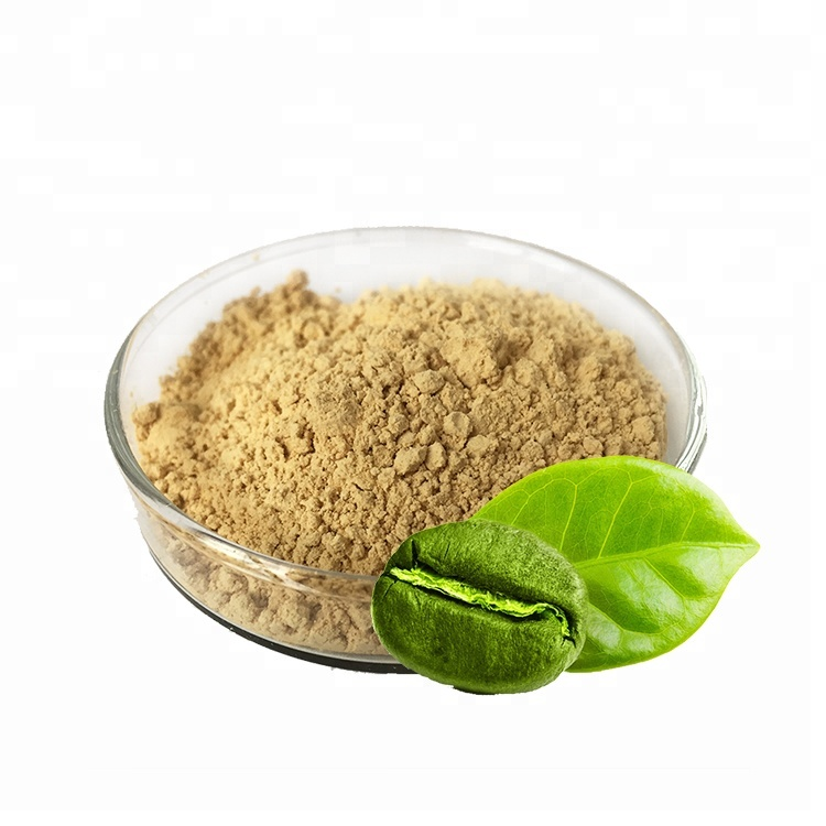 100 Pure Natural Free Sample Green Coffee Bean Extract Powder