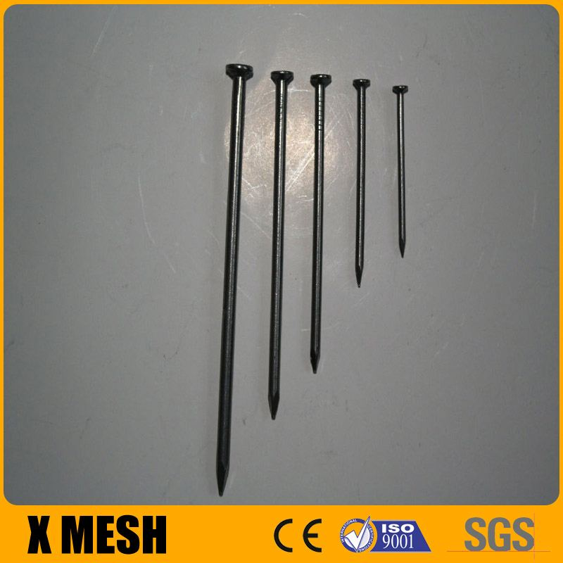 Brand new common smooth shank nail electric common