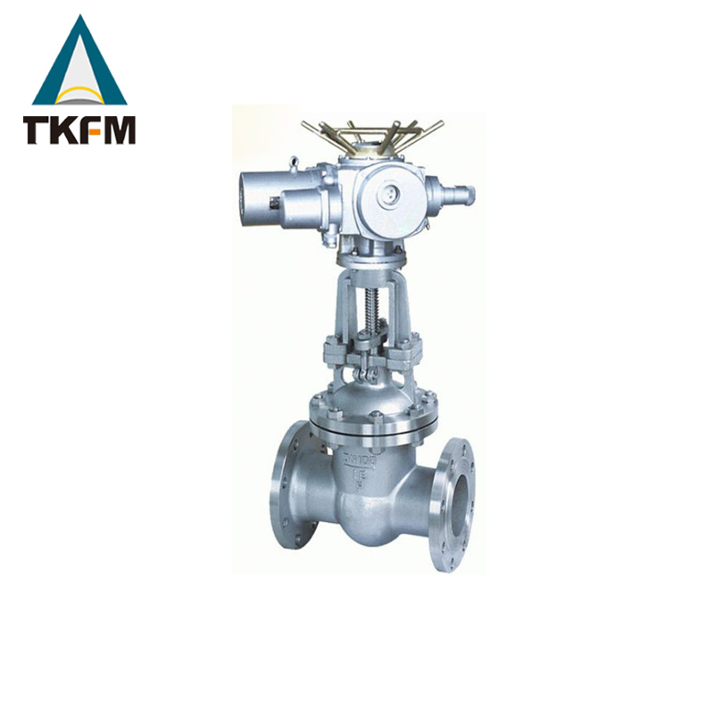 TKFM manufacture direct api automatic control 316 stainless gate valve with electric actuator for distributors