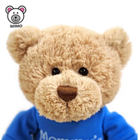 Cartoon Cute Stuffed Plush Teddy Bear Toy For Kids Wholesale Cheap Custom OEM Soft Plush Toy Fluffy Fat Bear