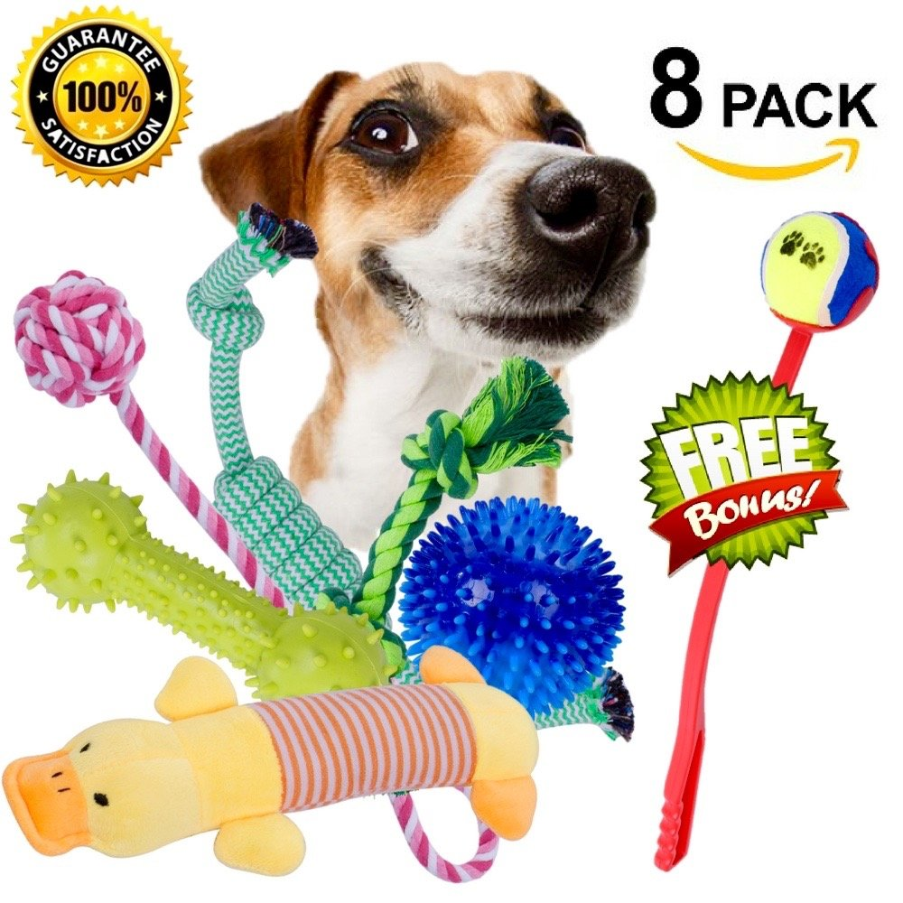 PET TOYS CITY Dog Rope Chew Toy Pack Puppy Chewing Toys Set Kit w/ Bone, Ball, Plush (8 Pack) w/ Ball Launcher for Interactive Play for all Dogs & Puppies, Good for Teeth Cleaning and Health Care