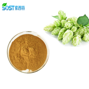 Wholesale Organic Hops Flower Extract