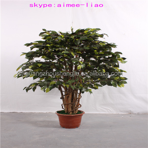 Q011121 Artificial Indoor Plants Fake Thuja Plants China Supplier ...