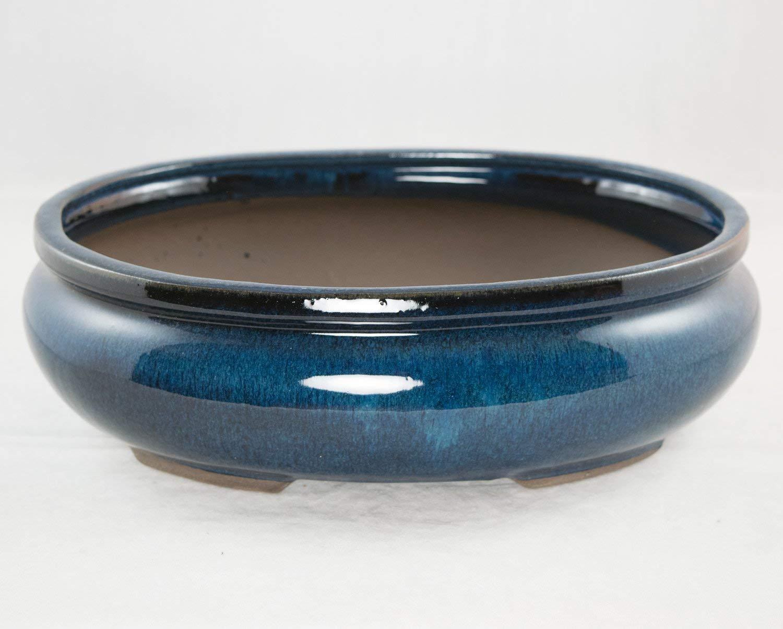 "Oval Bonsai/Cactus & Succulent Pot 10""x 7.5""x 3.25"" - Dark Blue Glazed"