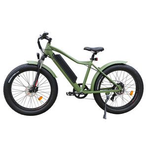 2018 New Arrival Fat Tyre MTB E Bike 48V 500-750W 13AH Samsung Battery 7 Speed Electric Bicycle