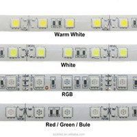 LED Strip 5050 IP68 Waterproof DC12V 60LED/M Outdoors LED Light Use Underwater for Swimming Pool, Fish Tank, Bathroom.