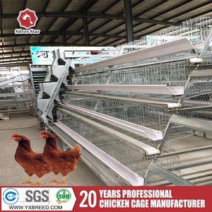 Factory supply automatic A type cheap chicken coops of bird cages