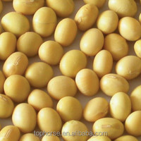 Organic Food Dried Soy Beans 2016