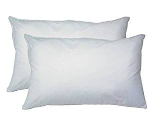 2-Pack Hypoallergenic Down-Alternative, Bed Pillows (King Size)