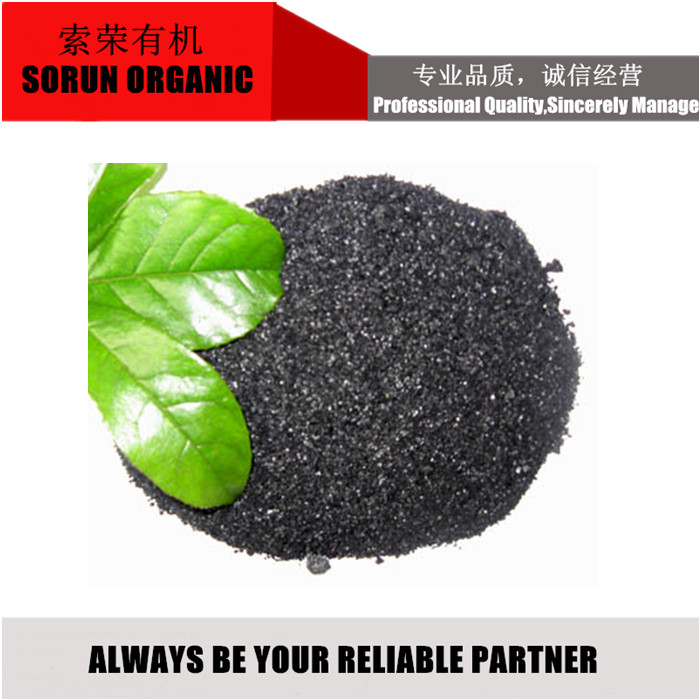 High grade Humic Acid Powder from Leonardite for Agriculture