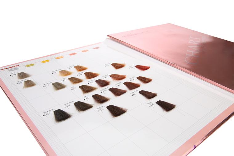 Henna Color De Pelo Carta Libro De Muestras Tinte De Pelo De Color ...