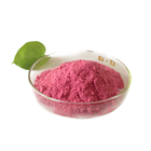 Top Quality No Pigment No Additives Pomegranate Fruit Juice Powder