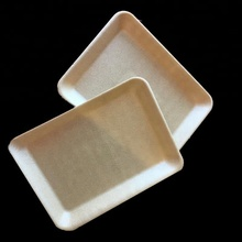 Size Customized Vacuum Forming Meat Packaging Biodegradable Food Trays