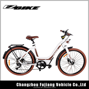 Lady electric bicycle e-bike,electronic bicycle for woman (TDF16)
