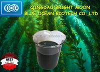 Seaweed Extract Liquid From Wild Ascophyllum Nodosum