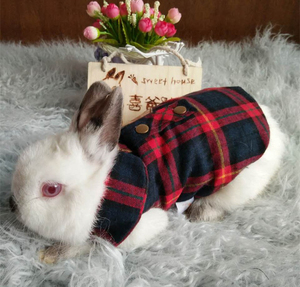 [PCL-091] Small Moq Wholesale 3 Colors Cheap Beautiful Pet Clothes For Rabbits