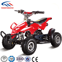 Chinese 49cc Pull Starter Mini Quads ATV Bike for Kids with CE