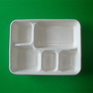 Disposable Biodegradable Bagasse Lunch Tray