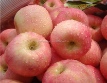 Red Fuji apple price in China/2016 new fresh fruits