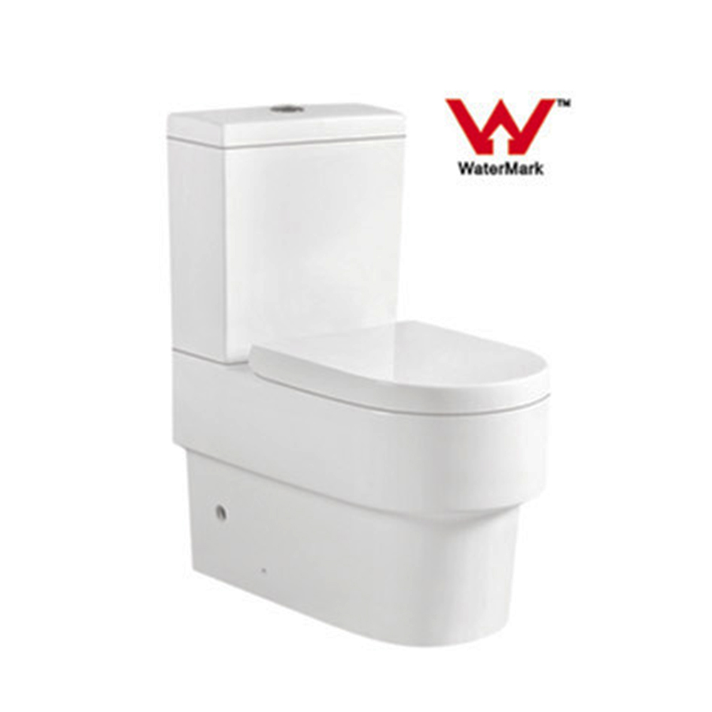 Water Ridge One Piece Dual Flush Toilet Supplieranufacturers At Alibaba
