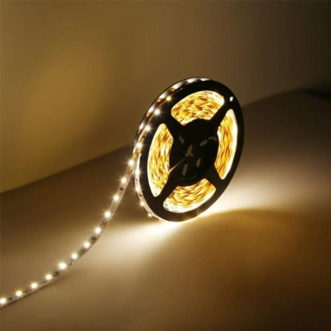 Kanzd 12V 5M SMD 3528 300LED Flexible Warm Cool White Fairy Strip Light