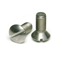 Stainless Steel Slotted Raised Head Countersunk Machine screws