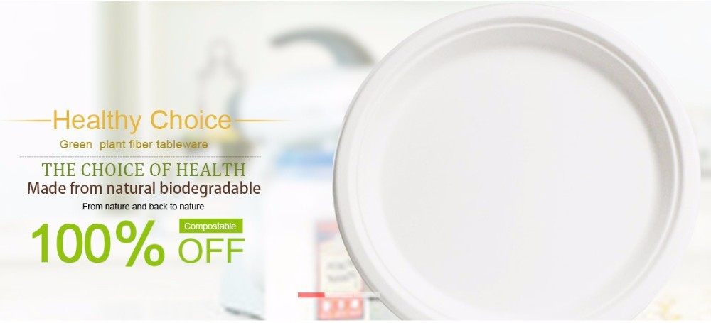 Lunch Box Compostable Plate Bowl Cup Natural Plant Fiber Products 10 pcs
