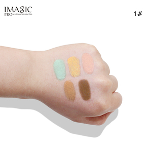 Makeup Trend concealer liquid foundation concealer loose powder concealer make up palette