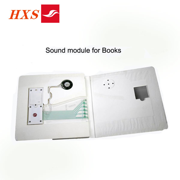 Shenzhen Supply Push Button Electronic Story Book Sound Module