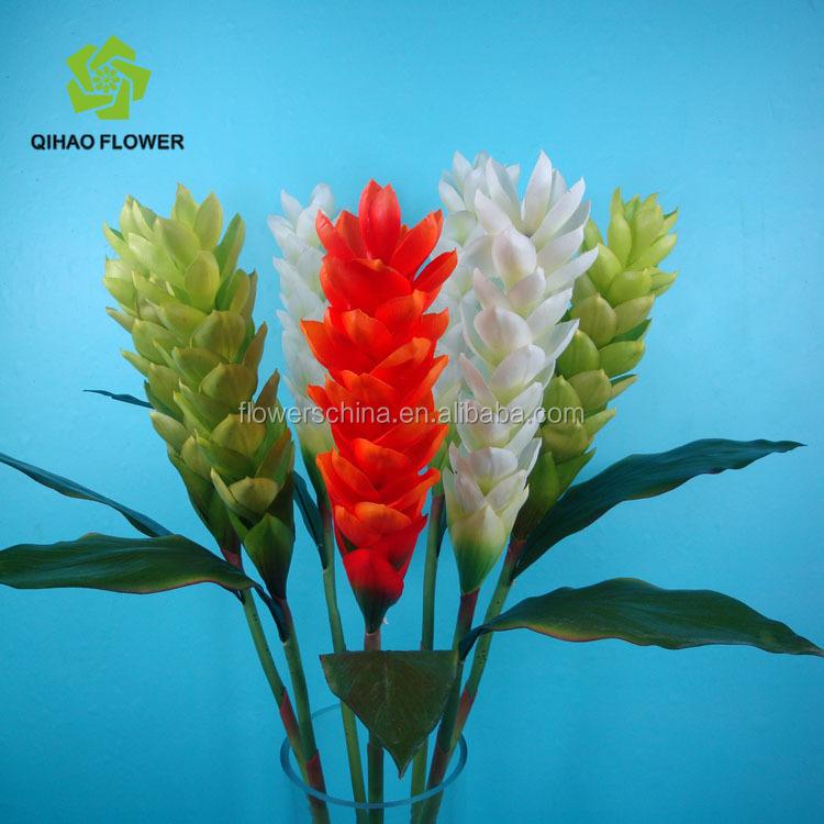 Membuat Foto Di Luar Ruangan Bunga Plastik Buatan Alpinia Untuk Dekorasi Ruang Tamu