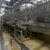 /product-detail/small-production-500bph-chicken-poultry-slaughter-equipment-and-process-line-1429956257.html