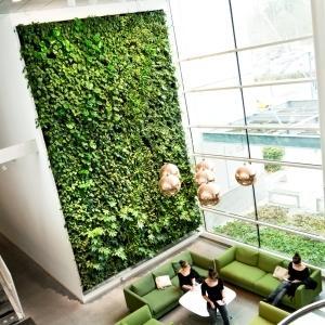 Vertical green indoor plant wall ,garden indoor plant wall ...