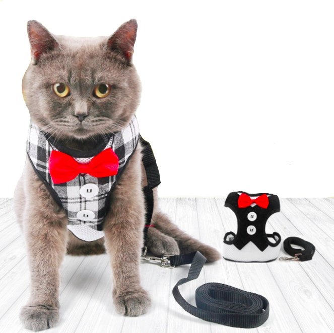 Cats Vest Harness And Leash Set ,Adjustable Comfortable Soft Mesh Harness Jacket Vest With Leash