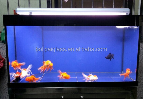 Unique Low-iron Glass Aquarium Fish Tank