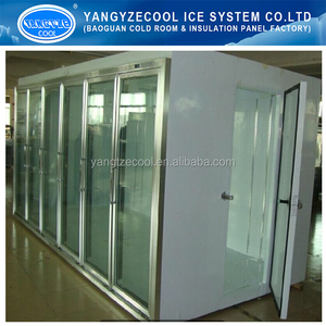 walkin cold room manufacture,pu panel cold room