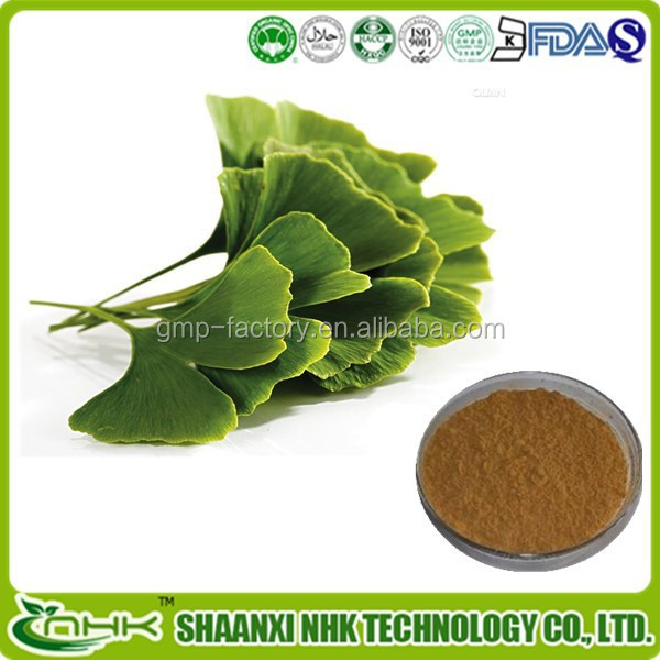 ginkgo biloba leaf extract powder / natural ginkgo extract / ginkgo biloba herbal extract